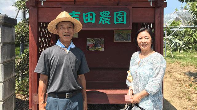 自然の恵み吉田農園